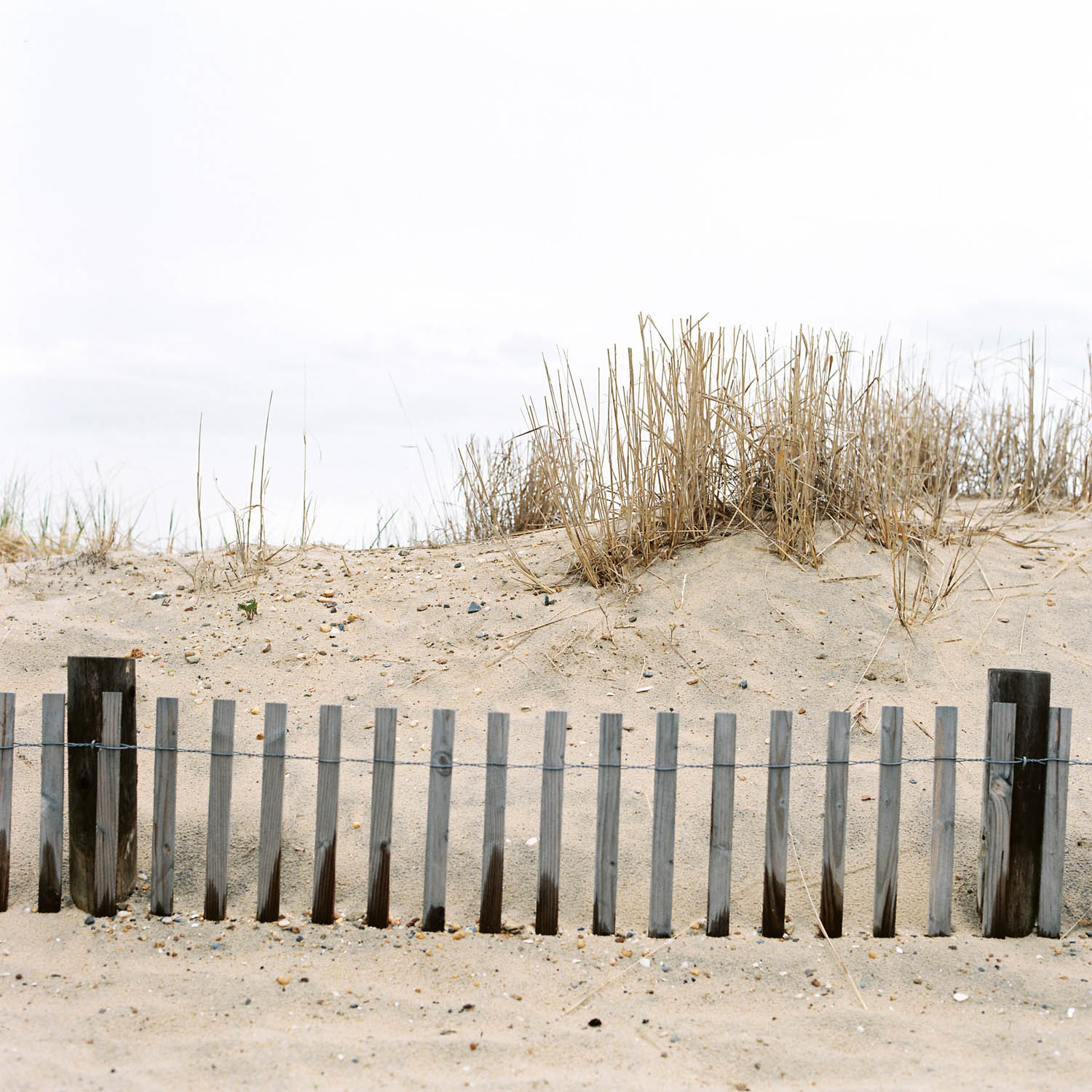 Rehoboth Beach, Delaware. Sand and wooden fence. Hasselblad 500c on Fuji Pro 400H